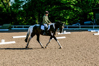 Dressage & Combined Training