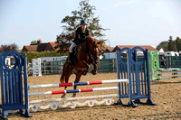 Parwood Show Jumping - 80cms-2907